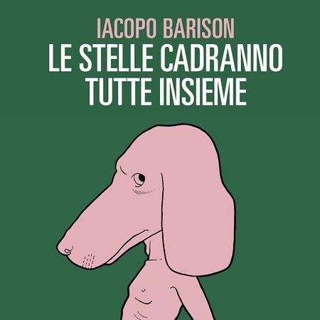 """""""Le stelle cadranno tutte insieme"""": presentazione del libro di Iacopo Barison"""