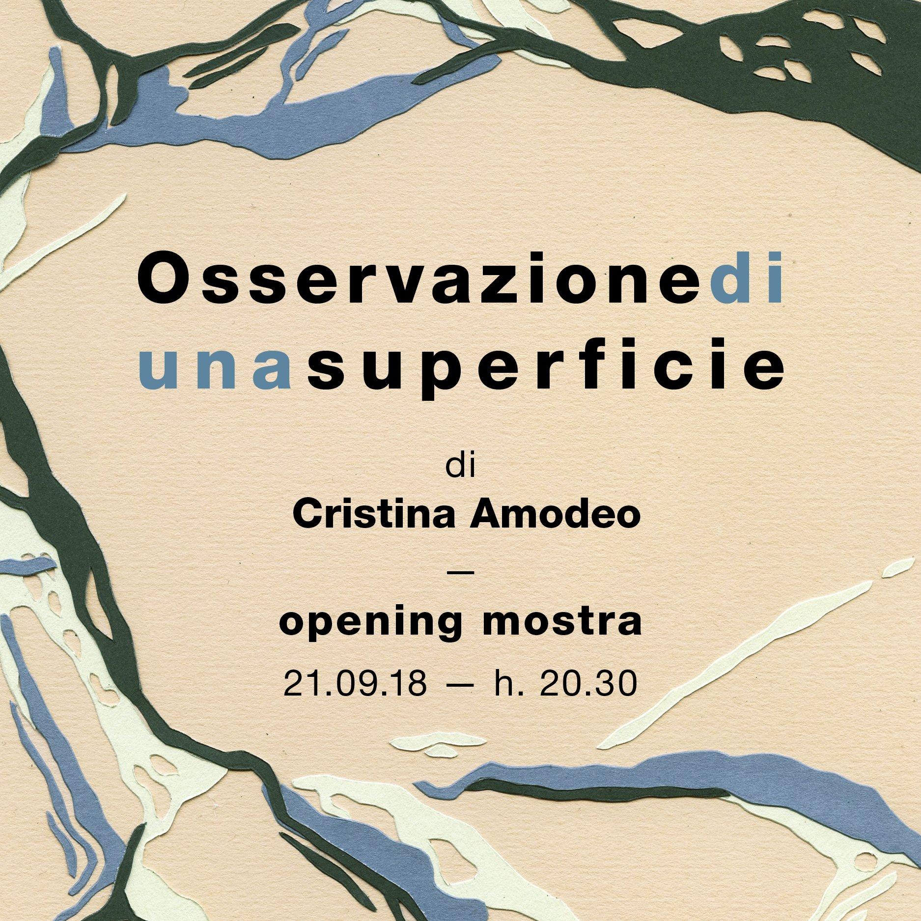 Osservazione di una superficie / Mostra di Cristina Amodeo
