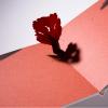 little_tree_komagata_mutty_02