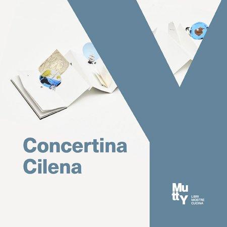 Workshop Concertina Cilena. Con Libri Finti Clandestini