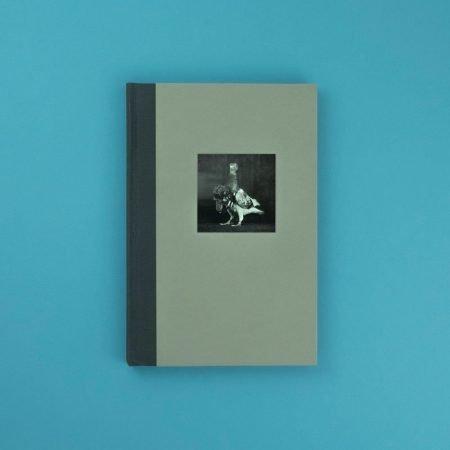2019-06-12-DSCF7272-Julius-Neubronner-&-his-pigeons-The-pigeon-photographer-Rorhof